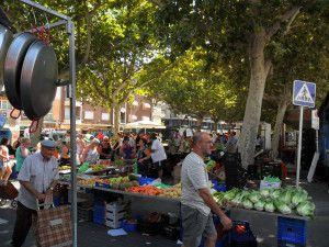 oliva markets